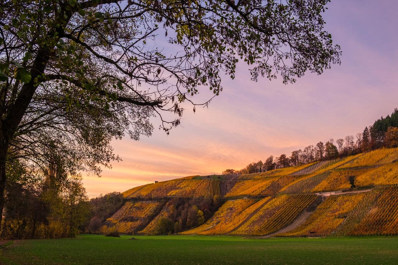 Fotokurs: Landschaftsfotografie meistern